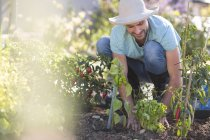 Молодой человек в саду ухаживает за растениями — стоковое фото