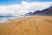 Сліди на пляжу Корралехо Фуертевентура, Канарські острови — стокове фото