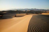 Mesquite flache Sanddünen, Death Valley, Nevada, Usa — Stockfoto
