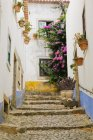 Stairs and traditional houses with plants and flowers in Obidos, Portugal — Stock Photo