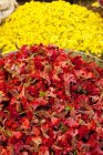 Rote und gelbe Blumen zum Verkauf auf dem Markt, Mysore, Karnataka — Stockfoto