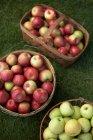 Свежих яблок урожая, высокий угол зрения. Красные и зеленые яблоки в плетеные корзины — стоковое фото