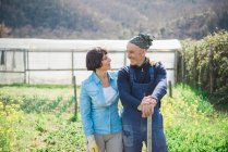 Mature couple smiling in vegetable garden — Stock Photo