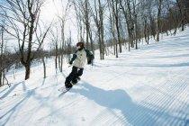 Жінка сноуборді в сніг пелериною ліс — стокове фото
