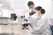 Científicos en ambiente de aislamiento usando máscaras, trabajando en laboratorio de investigación, usando microscopio. - foto de stock