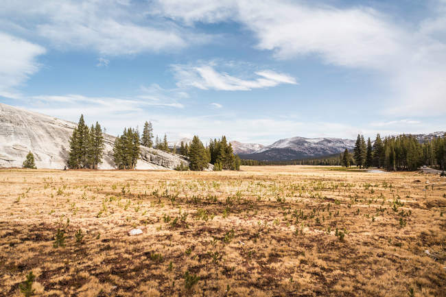 Paisagem com montanhas distantes — Fotografia de Stock