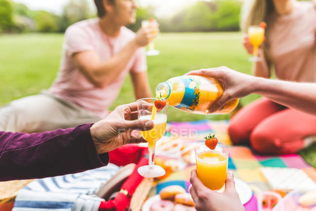 Group of friends enjoying picnic in park — Stock Photo