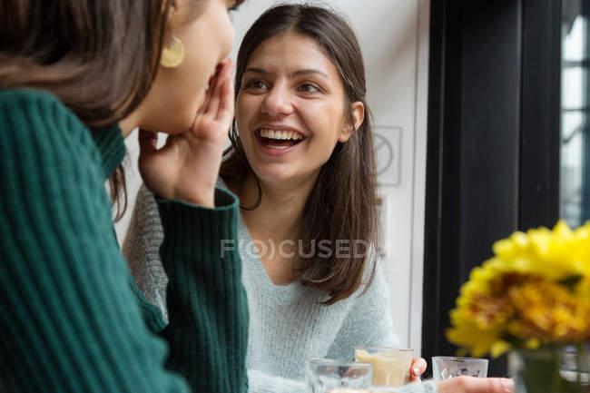 Две молодые женщины в кафе — стоковое фото