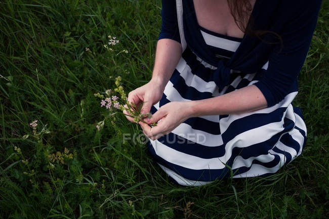 Young woman picking wild flowers — Stock Photo