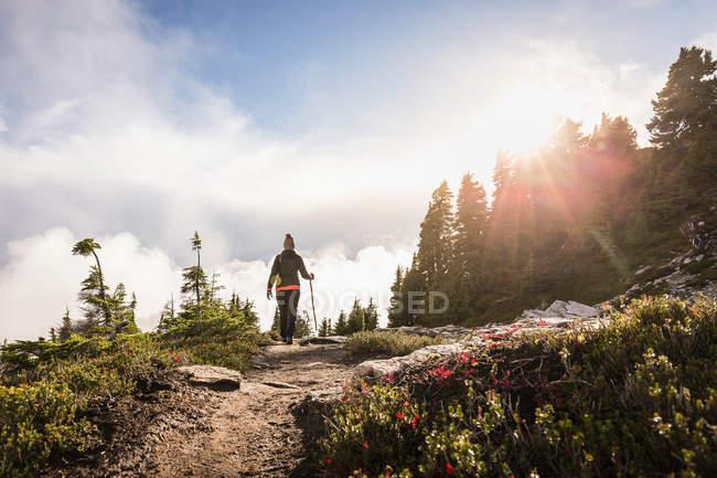 Hiker on Mount Baker — Stock Photo