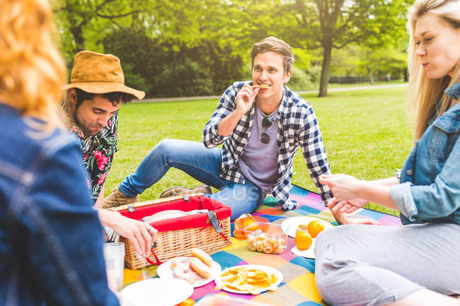 Group of friends enjoying picnic — Stock Photo
