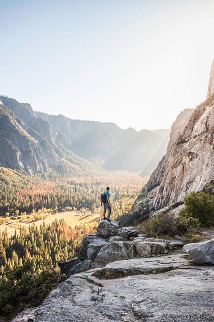Homem olhando para a floresta do vale — Fotografia de Stock