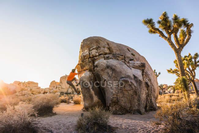 Чоловічий boulderer піднімаються Боулдер — стокове фото