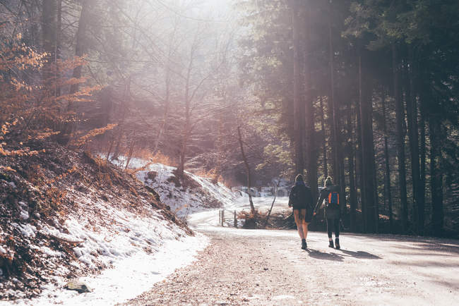 Coppia di escursionisti sulla strada della foresta illuminata dal sole — Foto stock