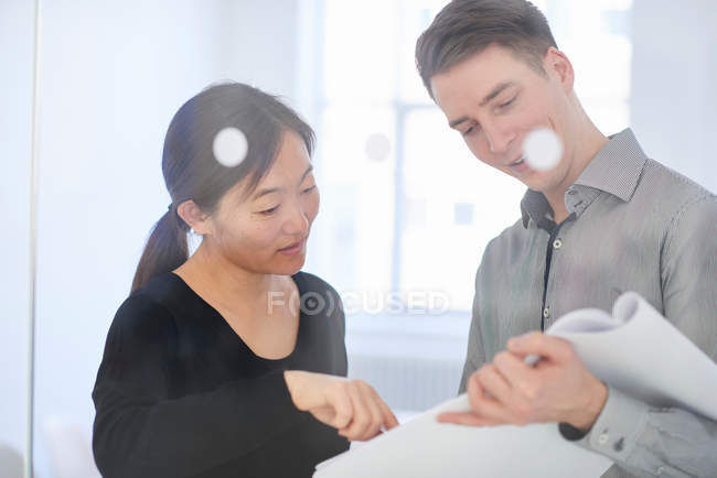 Colleagues in office discussing paperwork — Stock Photo