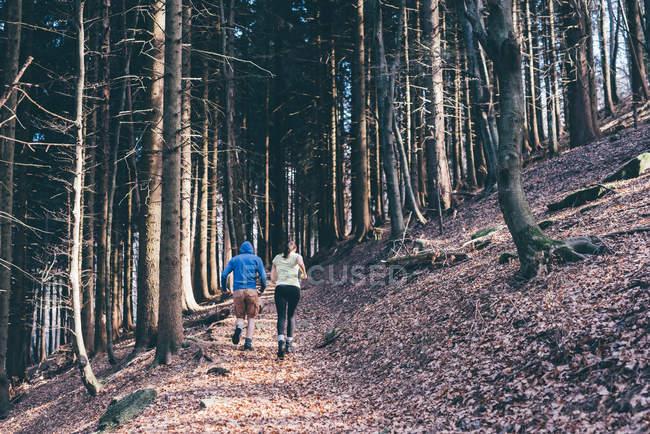 Laufenden paar läuft auf Waldweg — Stockfoto
