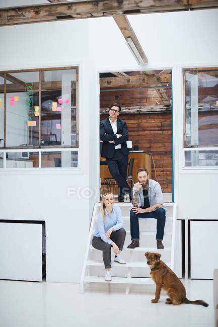 Équipe de conception de mâles et femelles avec chien — Photo de stock
