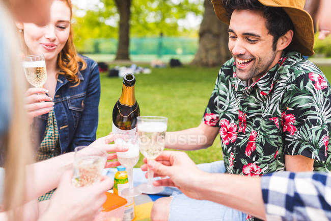 Group of friends pouring champagne in park — Stock Photo