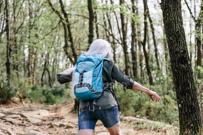 Mochileiro feminino andando na floresta — Fotografia de Stock