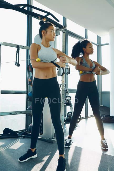 Женщины, тренирующиеся в спортзале — стоковое фото