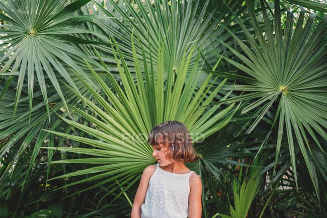 Preteen della ragazza davanti all'albero di Palma fronda — Foto stock