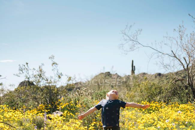Niño en el prado de flores silvestres - foto de stock