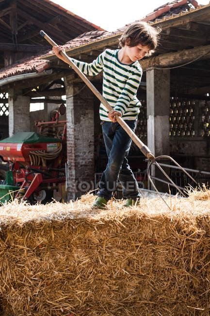Хлопчик на солом'яні тюки з Вила — стокове фото