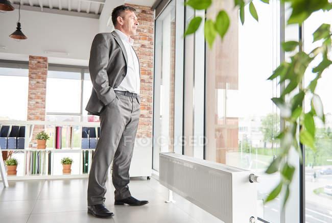 Повна довжина бізнесмен — стокове фото