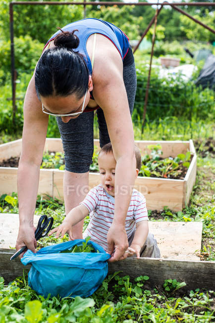 Mother and baby at allotment — Stock Photo