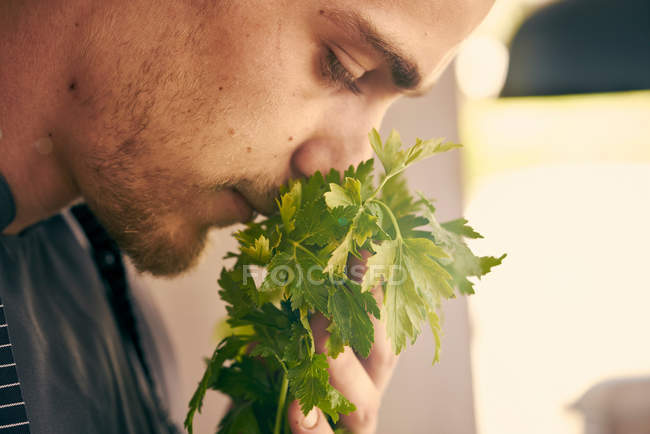Chef smelling fresh herbs — Stock Photo