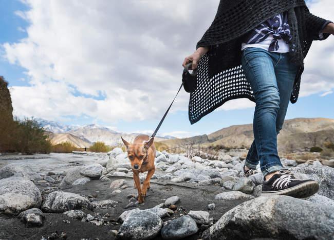 Oman zu Fuß Hund — Stockfoto