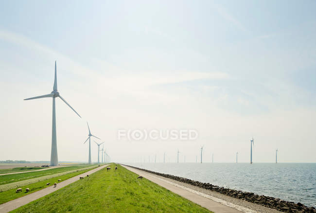 On and off shore wind turbines — Stock Photo