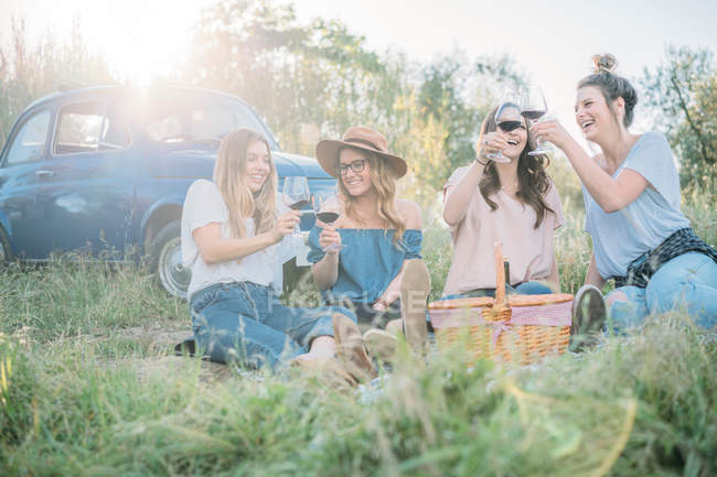 Friends in tall grass — Stock Photo