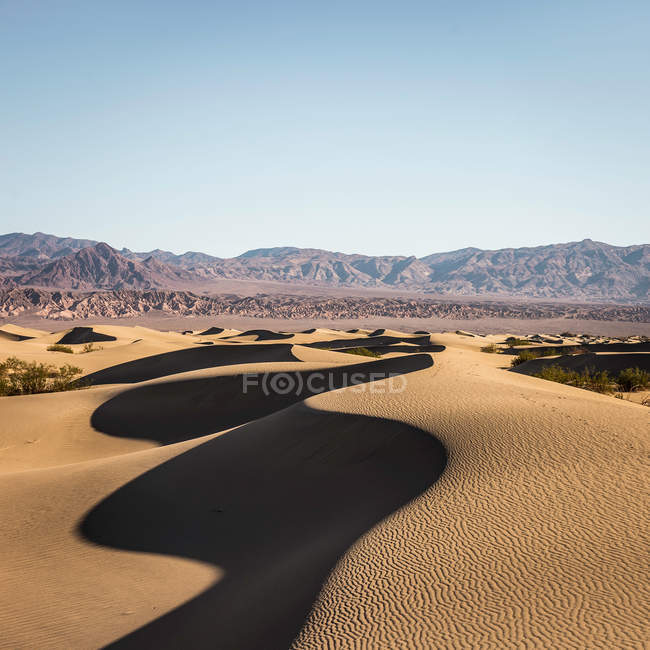 Dunes de sable plat Mesquite ombragées — Photo de stock
