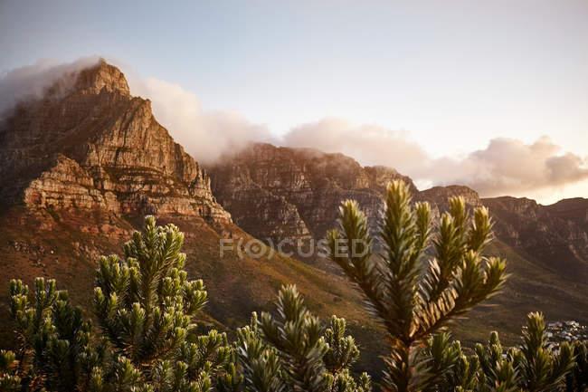 Vista da montanha cabeça de leões de montanha da mesa — Fotografia de Stock