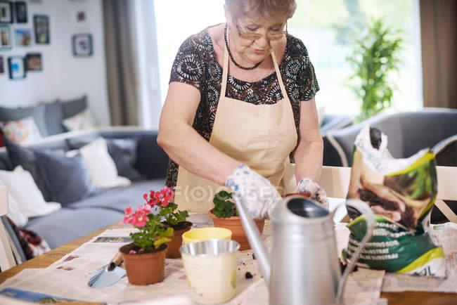 Mulher vasos plantas na mesa — Fotografia de Stock