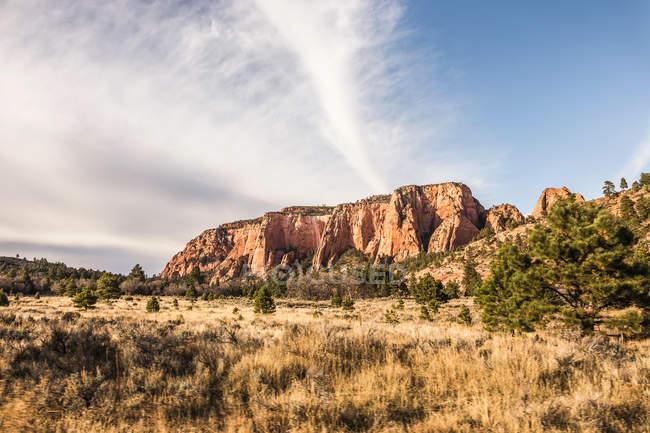 Formación de rocas en el Parque Nacional Zion - foto de stock