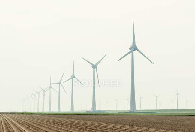 Ряд ветряных турбин в поле — стоковое фото