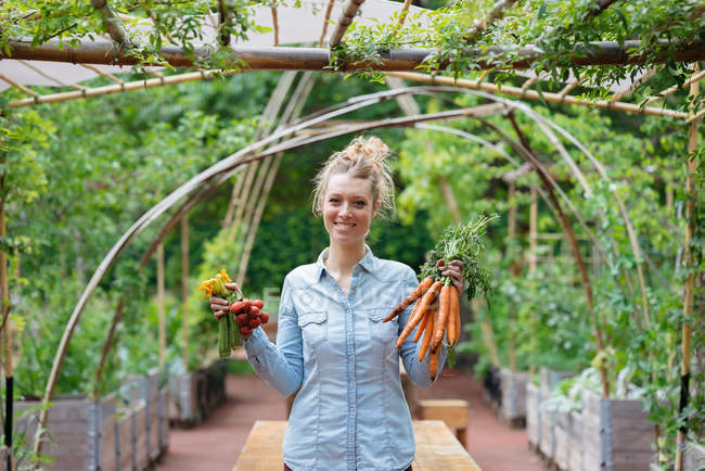 Woman holding bunches of carrots — Stock Photo