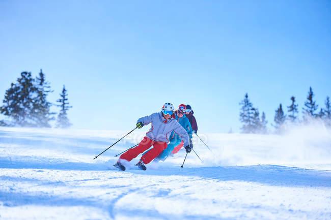 Мужские и женские лыжников — стоковое фото