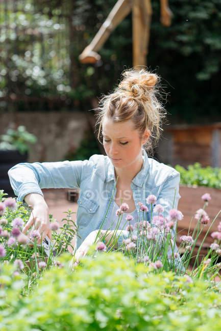Woman gardening in public garden — Stock Photo