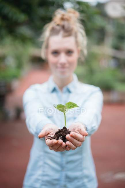 Woman holding seedling — Stock Photo