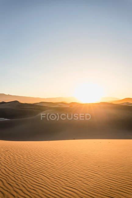 Dunes de sable plat Mesquite ensoleillées — Photo de stock