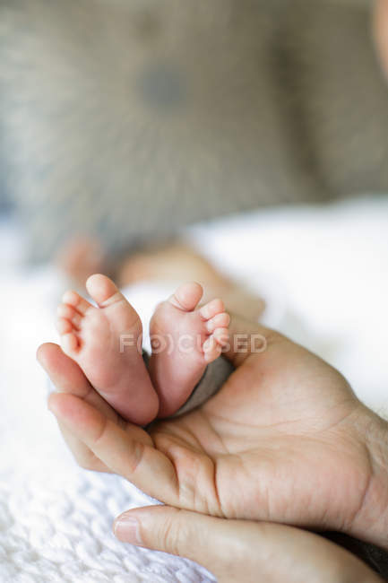Отец держит мальчиков за ноги — стоковое фото