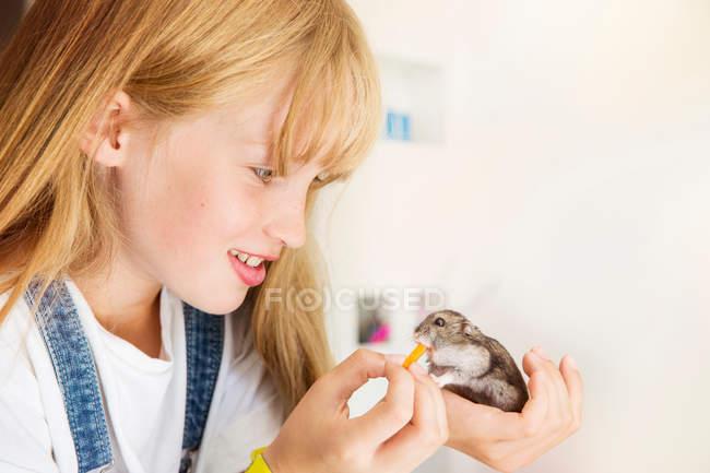 Девушка кормления хомяка — стоковое фото