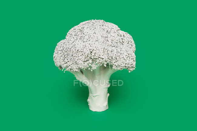 Broccoli painted white — Stock Photo