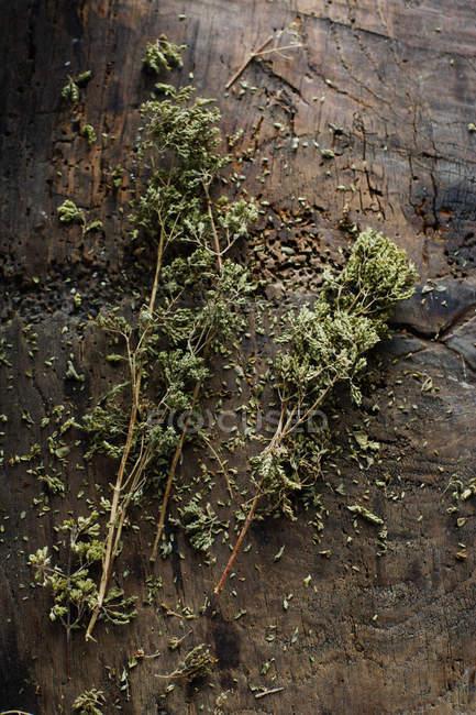 Getrocknete Kräuter auf Holzbrett — Stockfoto