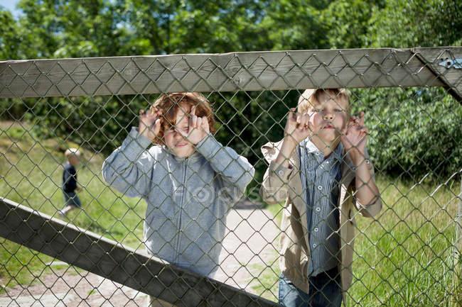 Мальчики заглядывают через цепной забор — стоковое фото