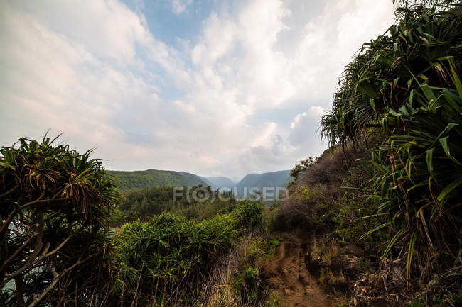 View of Pololu Valley — Stock Photo