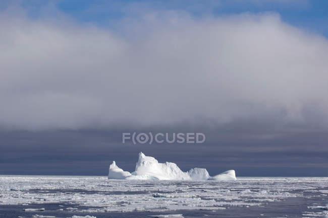Icebergs et la banquise de l'océan Austral — Photo de stock